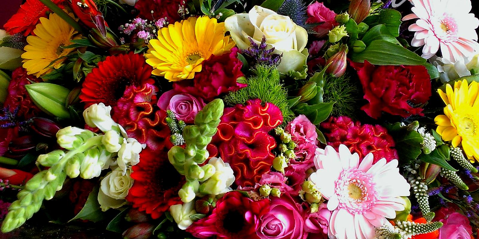 Dorien Bloemen Bloemen
